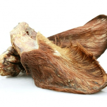 Veal Ears with Fur